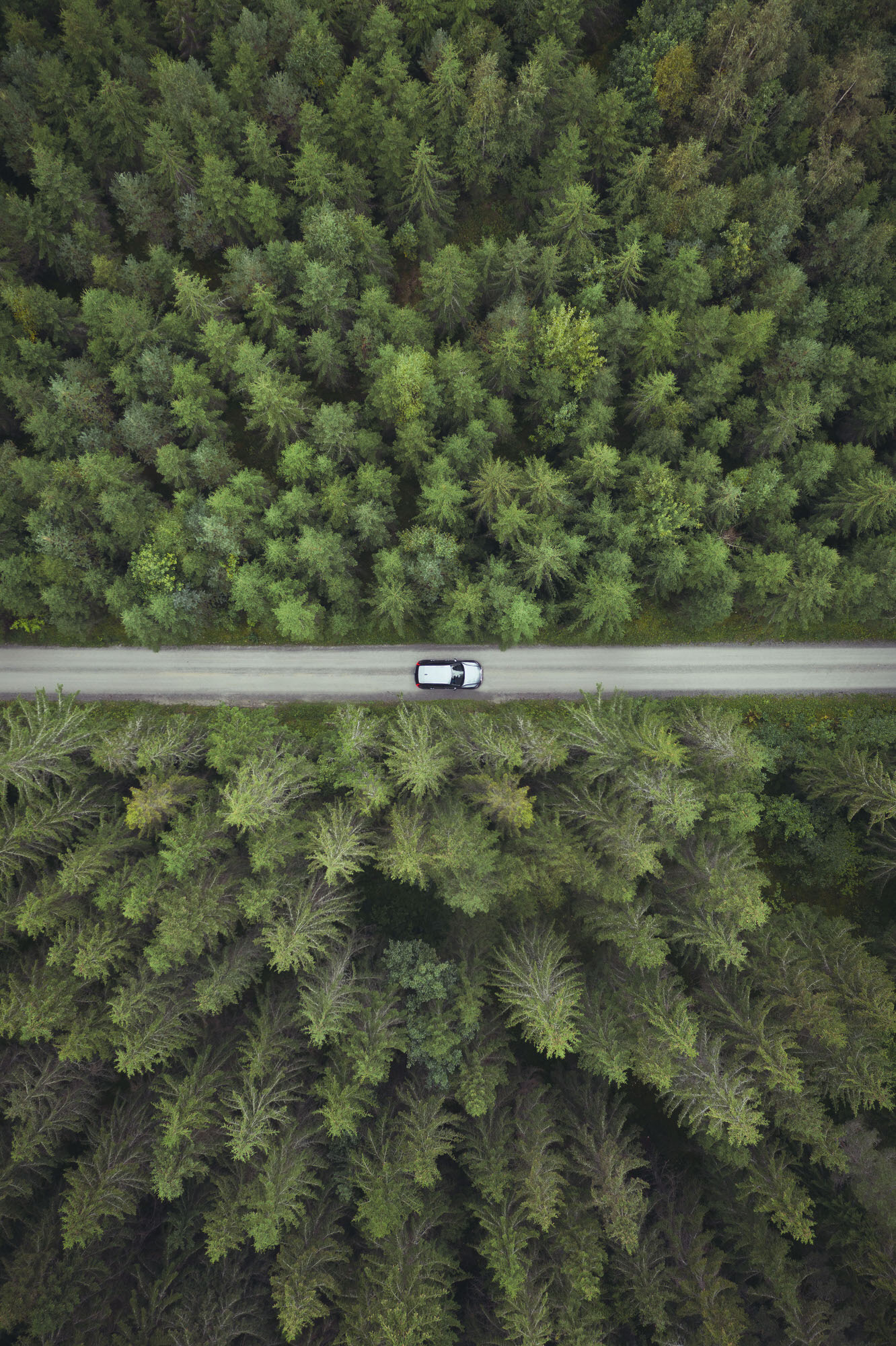 Aerial view of silver Volvo XC40 in the forests of Hamar, Norway.
