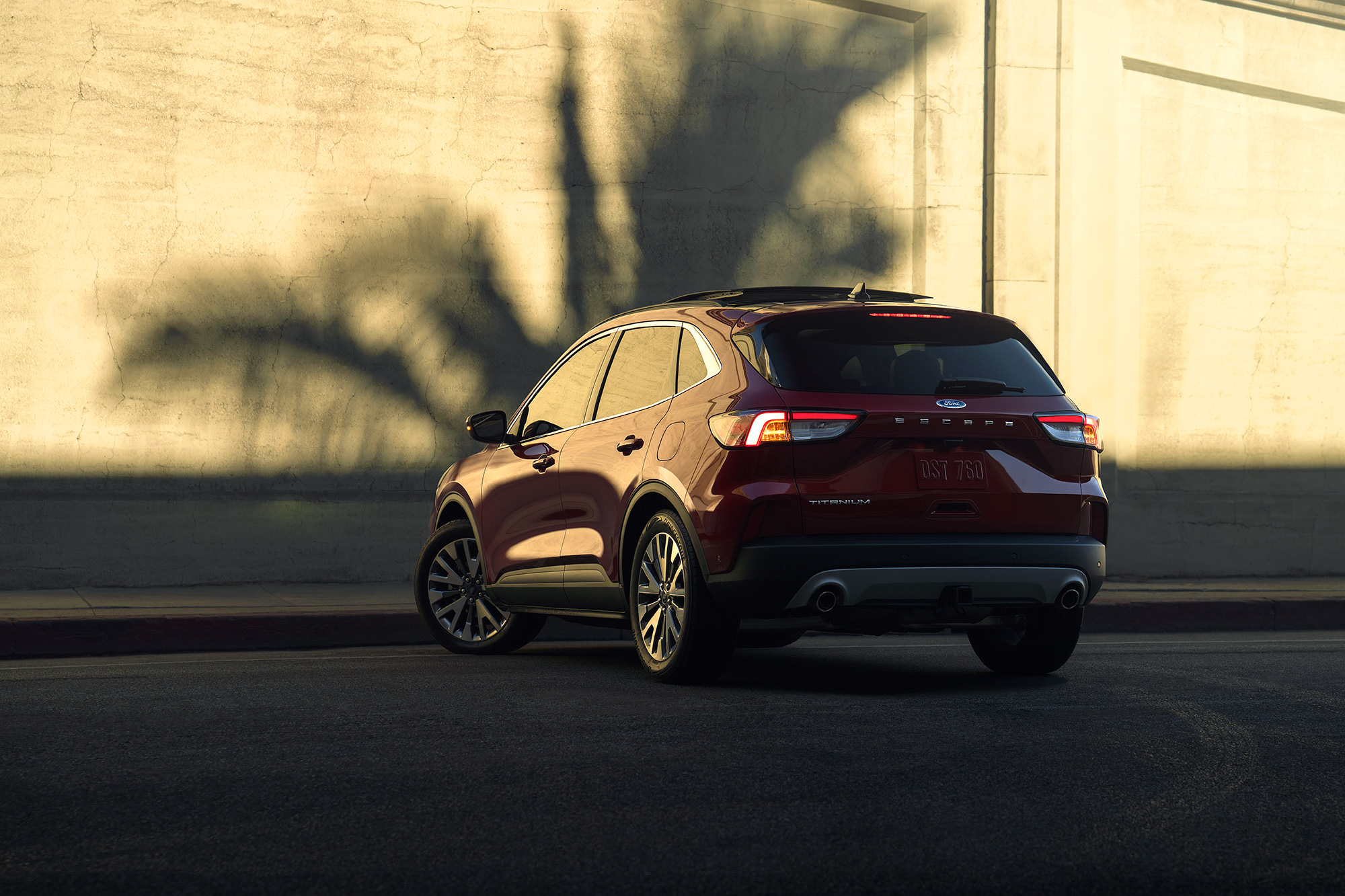 2020 Ford Escape in front of palm tree shadow