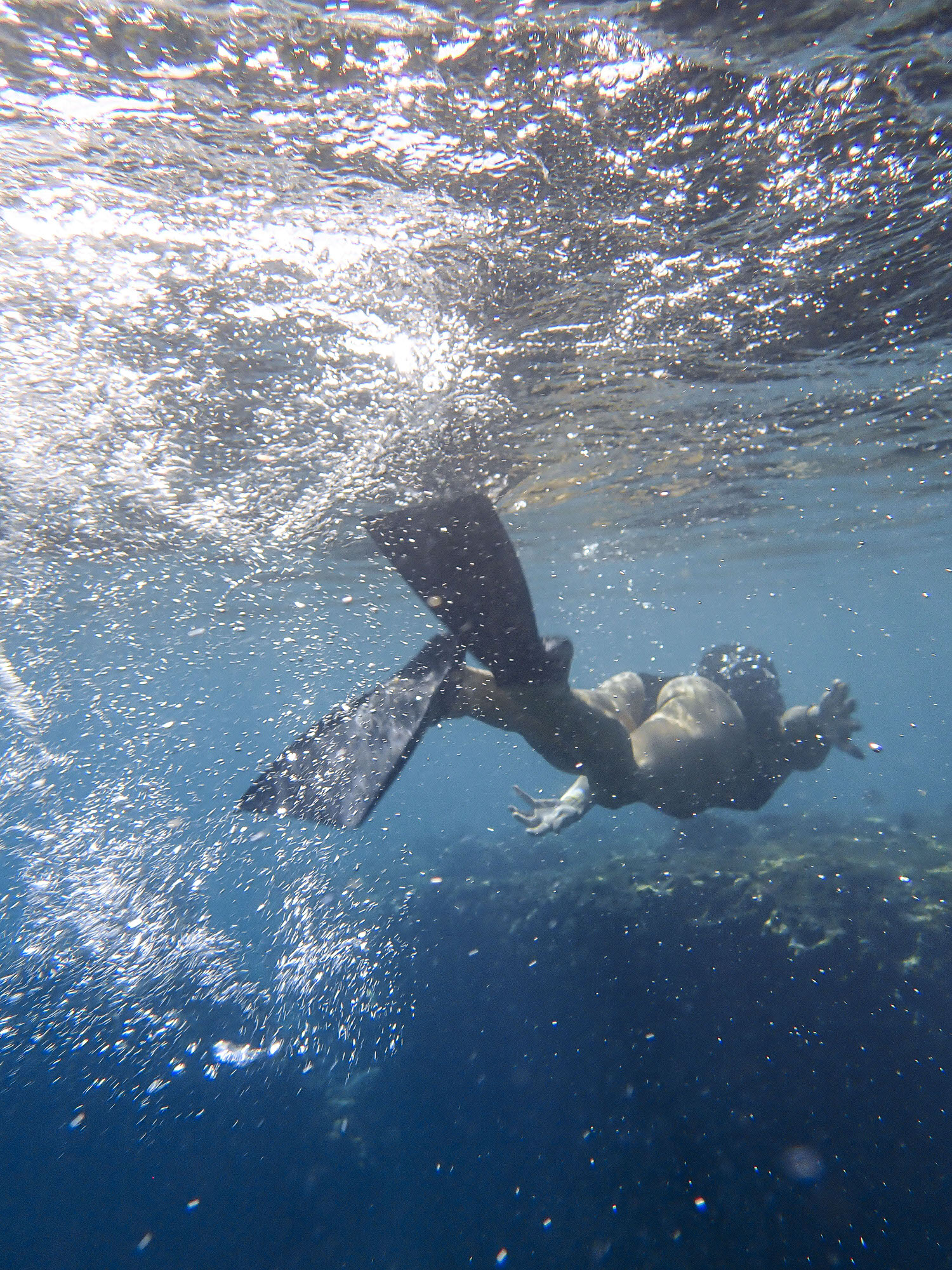 Snorkeling in the beaches of Maui