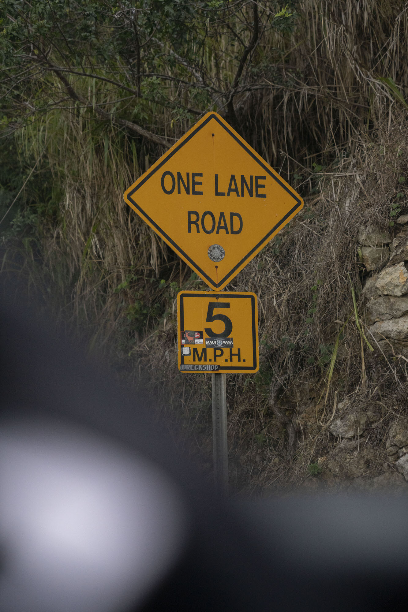 Road to Hana One Lane Road Sign